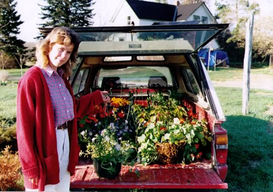 The truck loaded with hanging baskets for the market in 1993