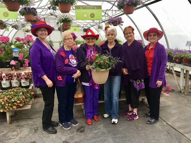 The Dazzling Damsels partake in design and plant a planter demo!