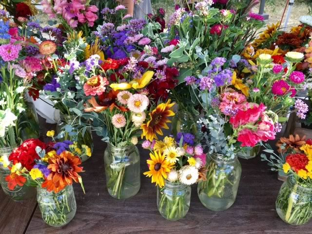 Grow your own flowers for cutting and arrangements