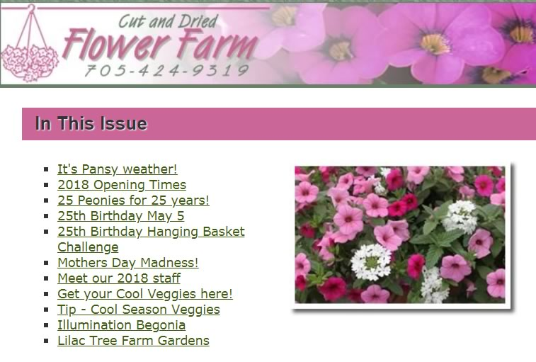 Gardening newsletters full of tips, plants, design and gardening ideas.