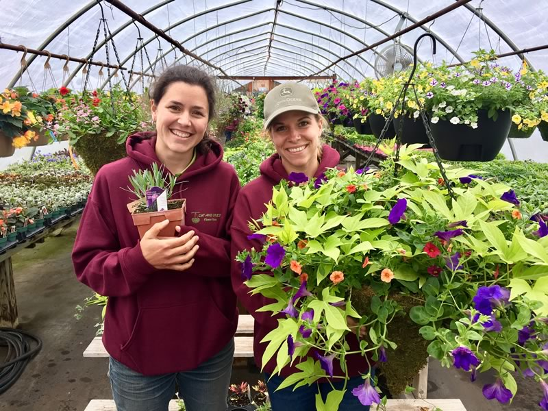 Jacqueline Fulham and Samm Haughton joined us in March and have been involved in planting and growing our crop since then.
