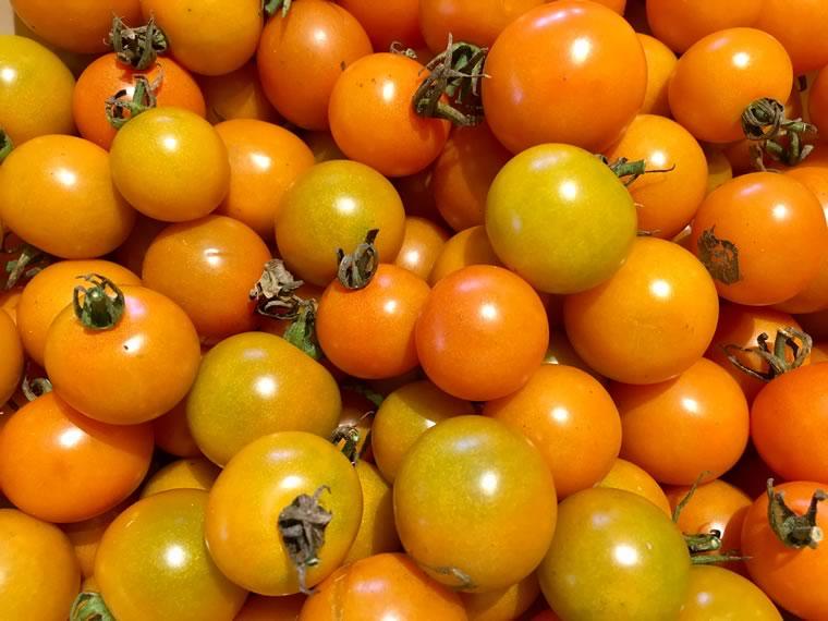 Favourite veggie: Cherry Tomato 'Sungold'
